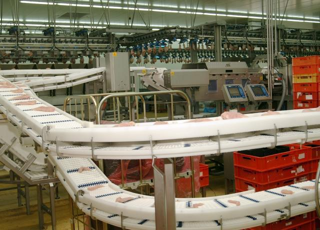 Klindworth Consulting hat langjährige Erfahrung mit industriellen Transportbändern und modular aufgebauten Fördersystemen.